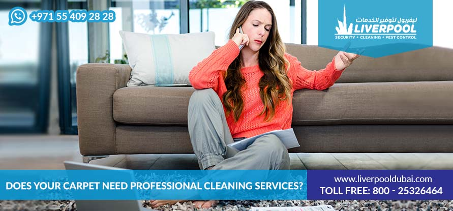 Cleaning Services in Dubai