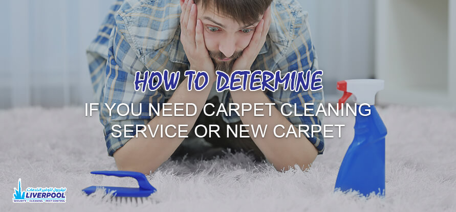 carpet cleaning service in dubai