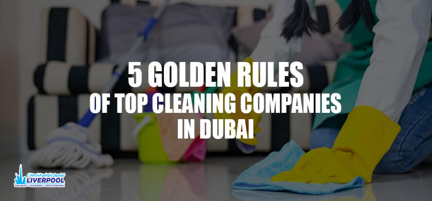 top cleaning companies in dubai